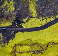 car-color-contrast-1660990